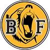Burk's Falls Bruins