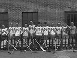 Central Amateur Hockey League