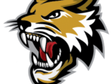 Vermilion County Bobcats