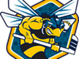 Rio Grande Valley Killer Bees (USACHL)