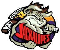 OdessaJackalopes.JPG