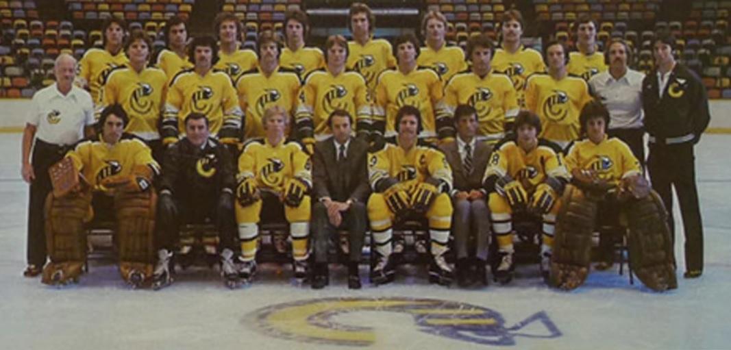 1977–78 Cincinnati Stingers season