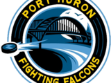 Port Huron Fighting Falcons