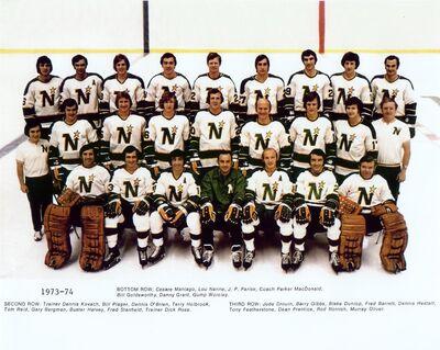 1973-1974 Stars.jpg