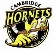 Cambridge Hornets.jpg