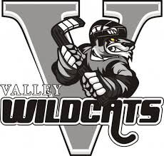 Valley Jr A Wildcats logo.jpg