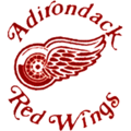 Adirondack red wings 200x200.png