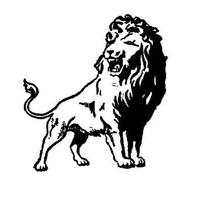 Washington Lions