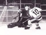1974–75 Minnesota Fighting Saints season
