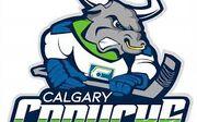 Calgary Canucks 2019 logo.jpg