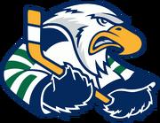 Surrey Eagles logo.png