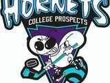 Buffalo Hornets