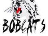 Elliot Lake Bobcats