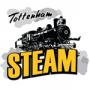 Logo as Tottenham Steam