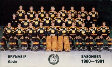 1980-81 Elitserien season