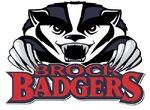 Brock badgers large.jpg
