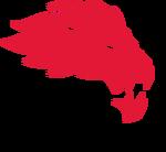 York Lions women's ice hockey athletic logo