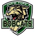 NYBobcats logo.png