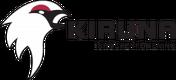 Kiruna IF logo.png