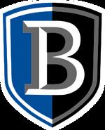Bentley Falcons men's ice hockey athletic logo