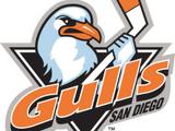 San Diego Gulls (1995–2006)