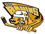 Troybruinslogo.PNG