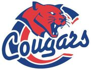 Carlyle Cougars.jpg