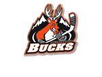 Breckenridge bucks logo.jpg