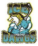 Arborg Ice Dawgs logo.jpg