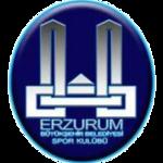 Erzurum Büyükşehir Belediyesi GSK
