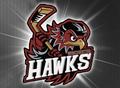 Winchester Hawks
