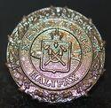 NS-Tech-medallion-225x219.jpg