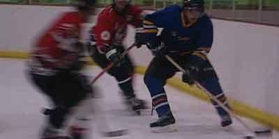Aardwolfs Ice Hockey Club
