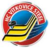 Previous logo as HC Vítkovice Steel