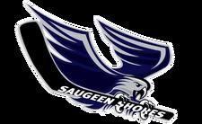 Saugeenshoreswinterhawks.png