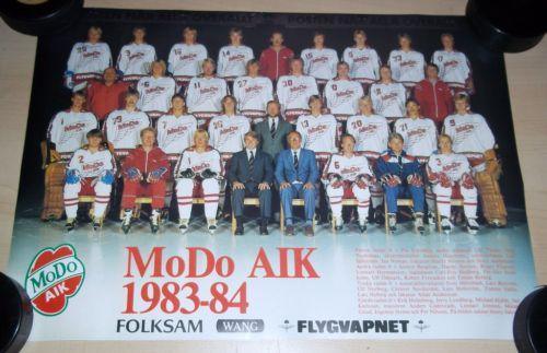 1983-84 Elitserien season