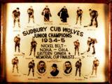 1934-35 Northern Ontario Junior Playoffs