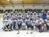 2008 IIHF World Championship Division III Qualification