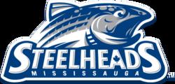 logo 2012-2015