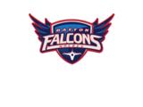 Dayton Falcons