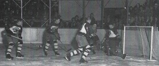 1929–30 Boston Bruins season