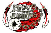 Peguis Juniors.jpg
