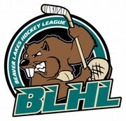 Beaver Lakes Hockey League logo.jpg