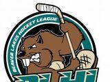 Beaver Lakes Hockey League