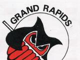 Grand Rapids Jr. Owls