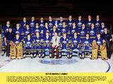 1977–78 Buffalo Sabres season