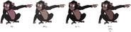 Grace Chimp's color evolution