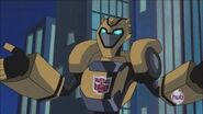 The great quotes of Bumblebee