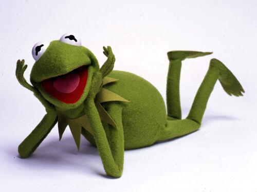 Kermit 1.jpg