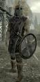 Riften Guard